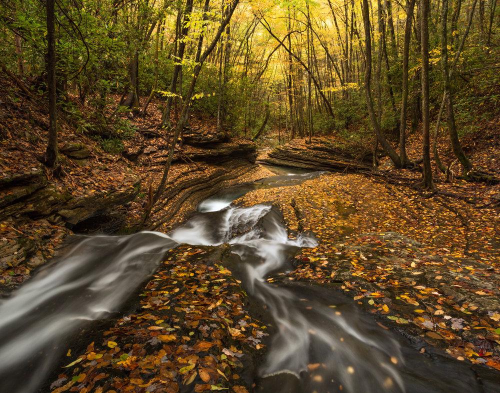 61. Devil's Bathtub, Jefferson National Forest, Virginia