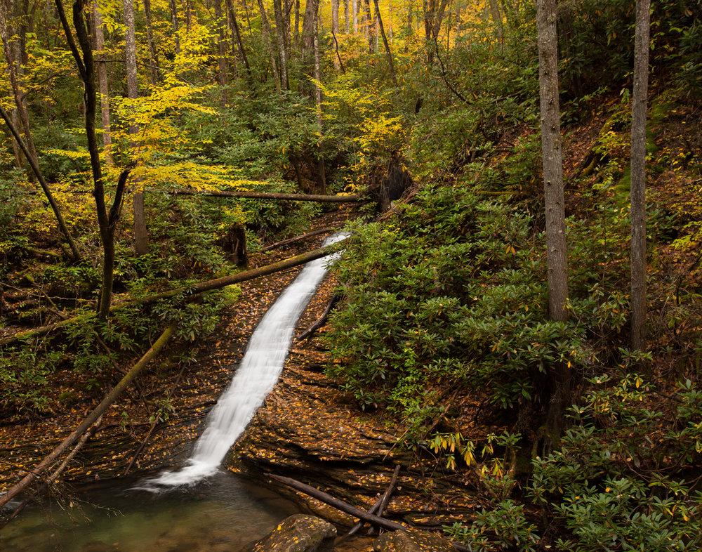 60. Devil's Fork, Jefferson National Forest, Virginia