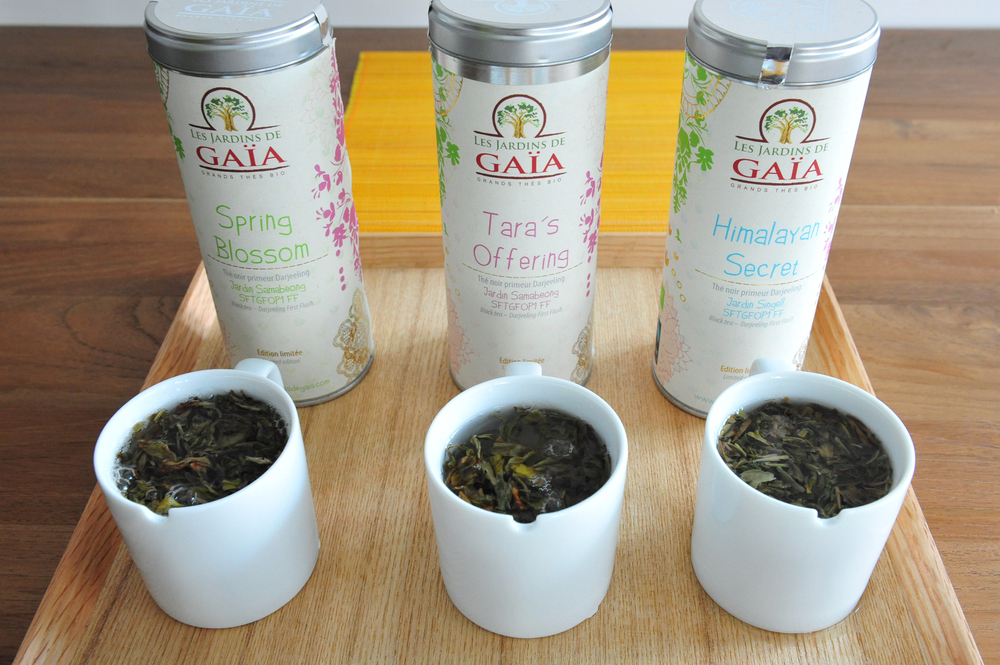 Three of our finest First Flush Darjeeling: Spring Blossom, Tara's Offering and Himalayan Secret.