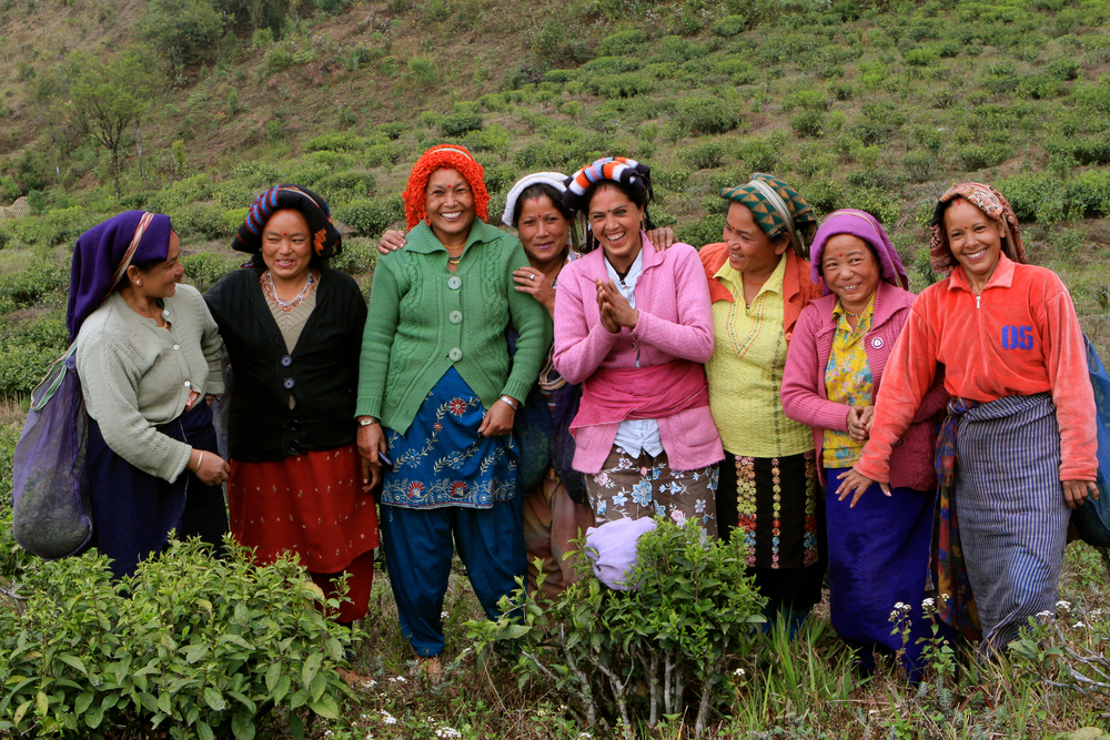Samabeong Group of pluckers.jpg