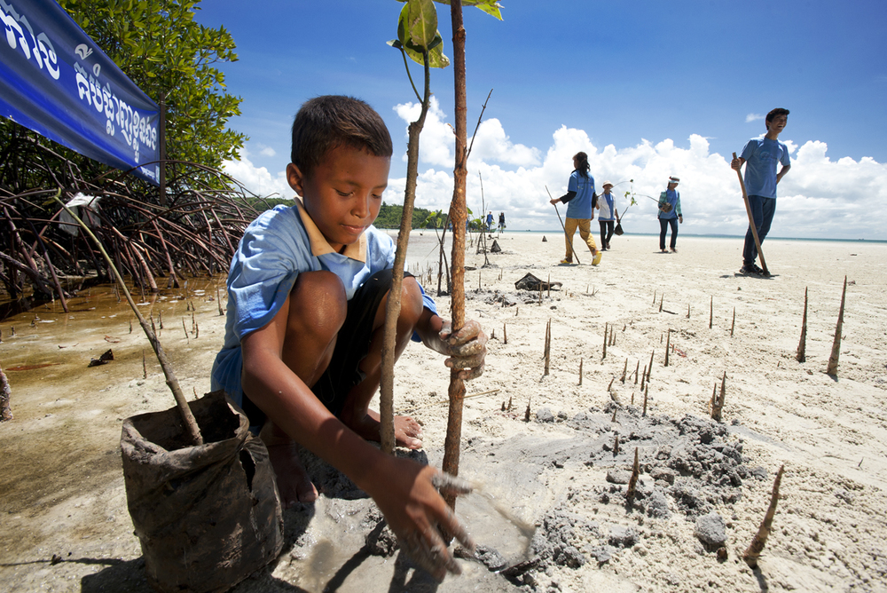 Mangrove planting WOrld Oceans Day 2014_Jeremy Holden_FFI.jpg