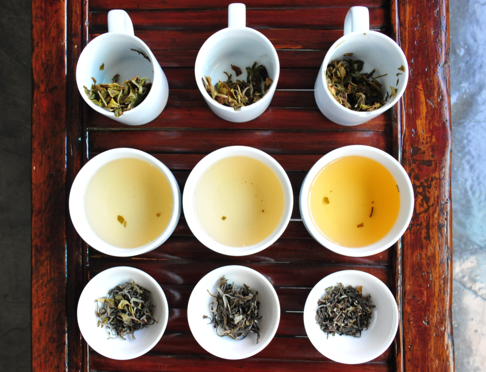 """""""Tea is said to be a way. This is because it is something one learns to appreciate through feeling, not through verbal instruction. If a person maintains a state of quietness, only then will one appreciate the quietness inherent in tea."""" ~ Lu Yu"""
