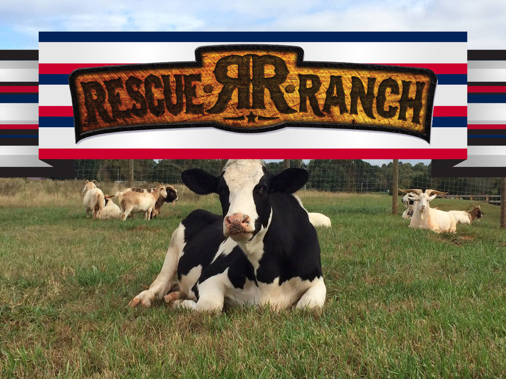 Rescue Ranch.jpg