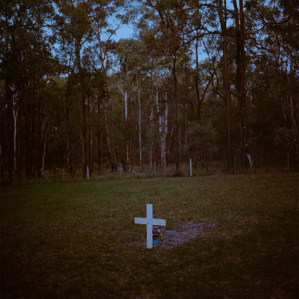 Cross, 2016