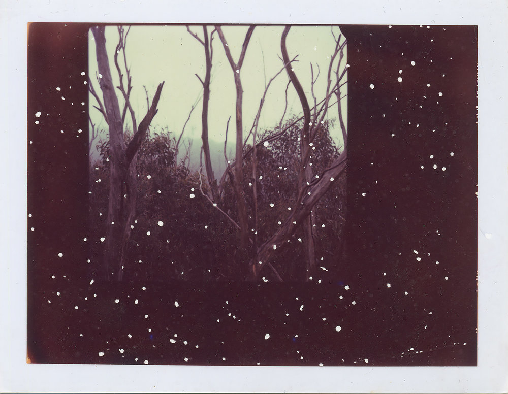 <i>Untitled #1</i>, 2007, Polaroid ER 669, 8.5 x 10.8 cm