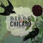 Birds of Chicago - 2012