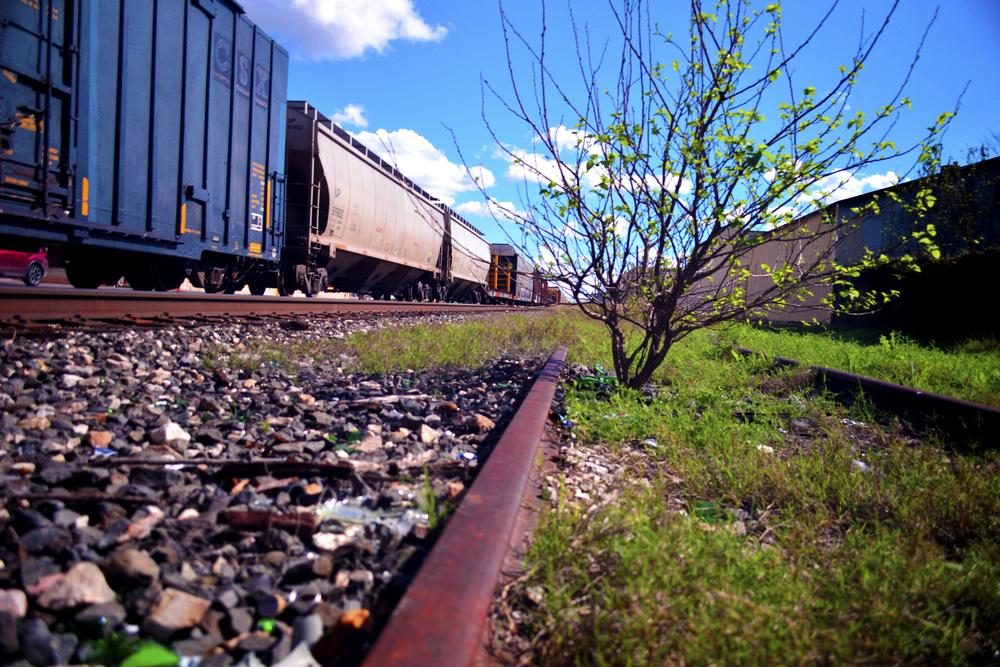 Rail Overgrown