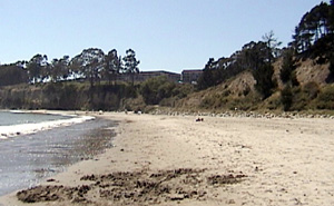 This photograph shows the same angle as the one the left 90 years later. Note that the bluff on the right is now covered with vegetation. The trees in the distance are the same as or descendants of those showing in the earlier photograph. Most are eucalyptus. Note that the beach is much narrower now.