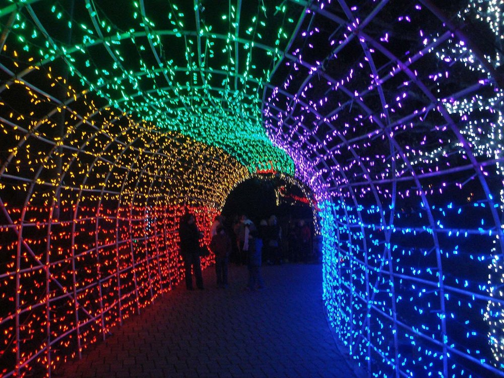 The entrance to the Cambria Christmas Market is a gentle beginning to a lighted wonderland.