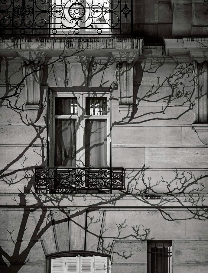 Michael Wolf, Paris Tree Shadows #8, archival pigment print, 40 x 50 cm .jpg