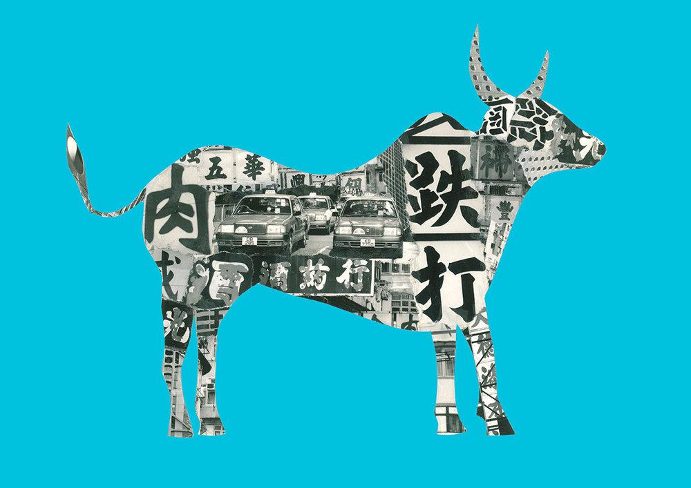 Ox in Hong Kong [light blue]