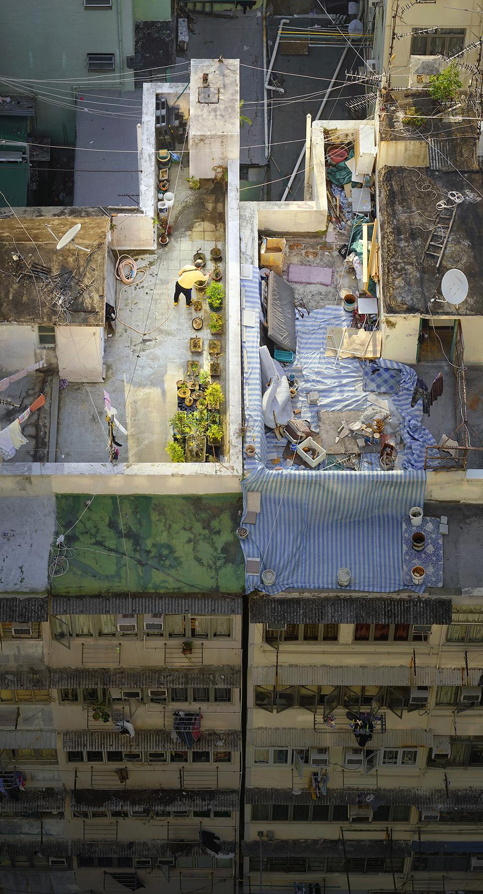 "Romain Jacquet-Lagrèze ""Bonsai Master"" [Hong Kong, 2017]"