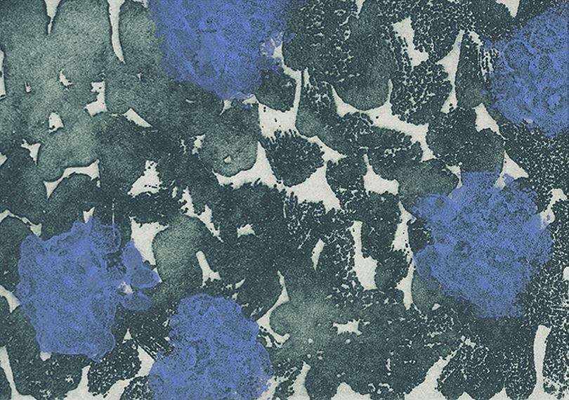 Euphrosyne Andrews,  Royal Burst Swatch 0116-02,  2016, etching with carborundum