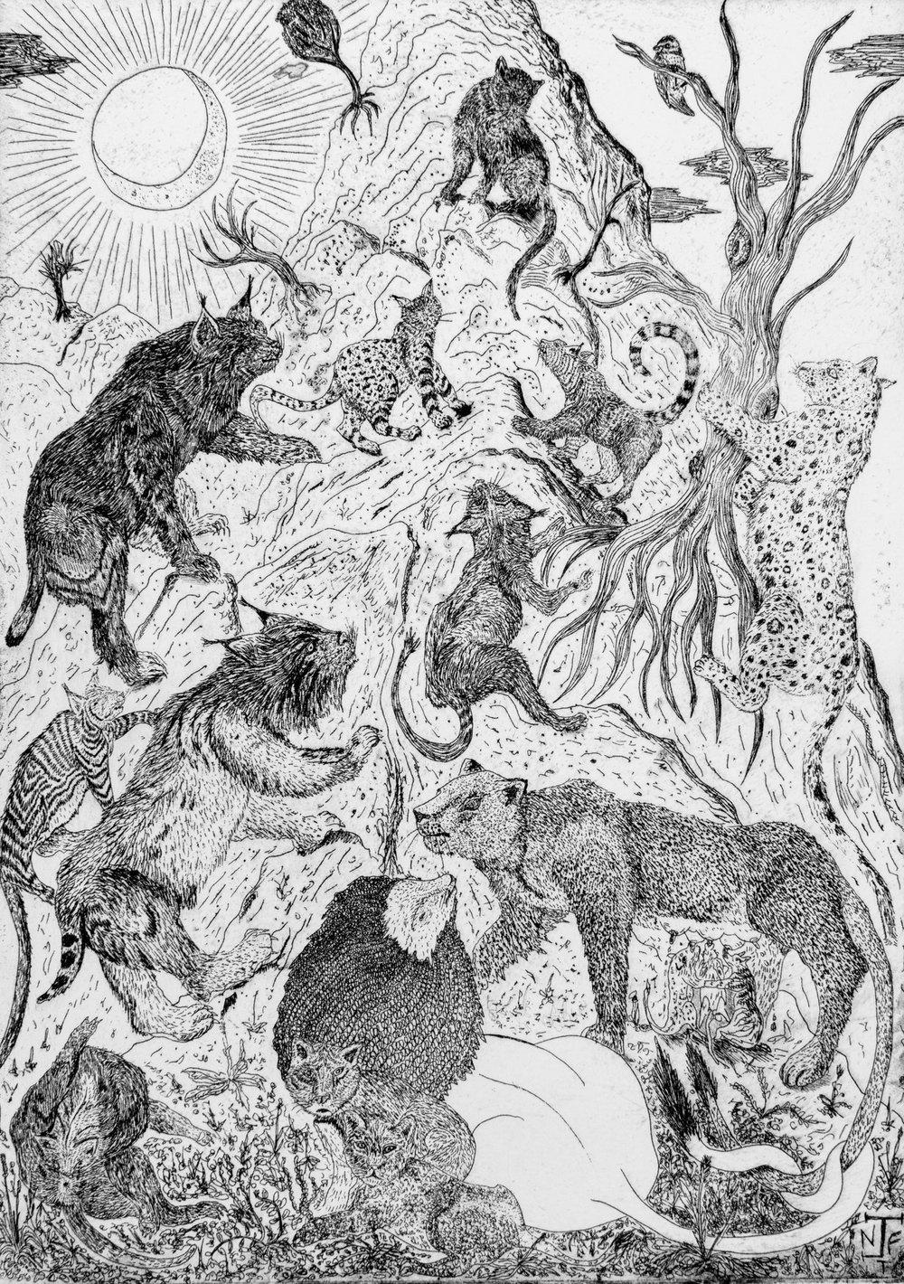 Jack Fawdry Tatham,  Django King of Cats,  2017, etching