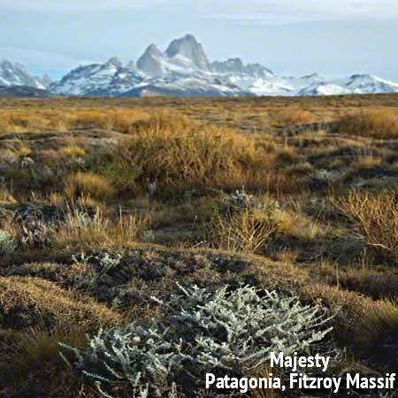 Patagonia Perspective.jpg