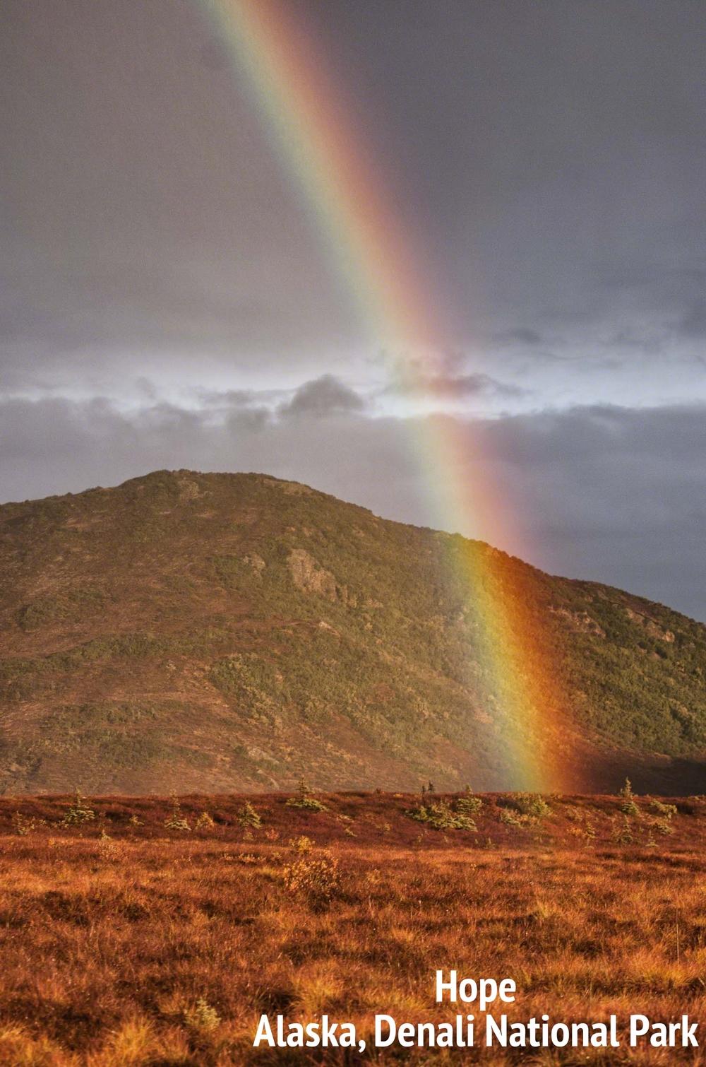 Rainbow Denali.jpg