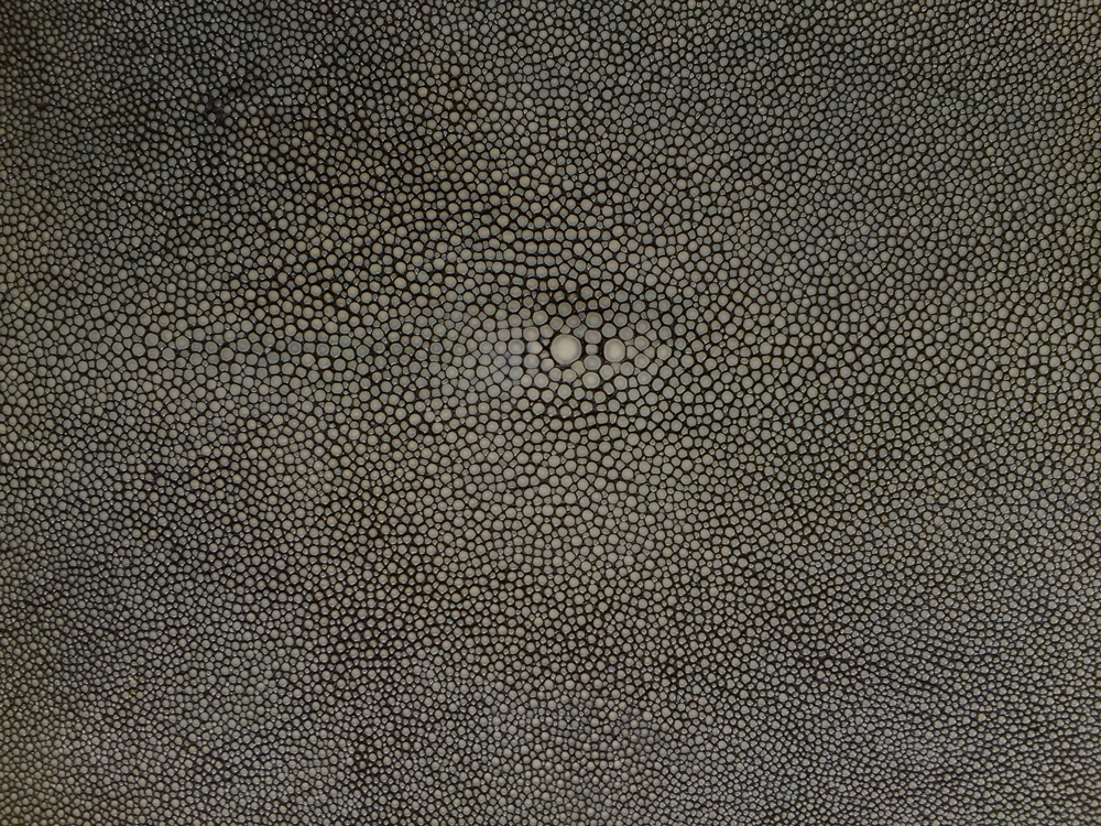 Genuine Exotic - SHAGREEN CHARCOAL