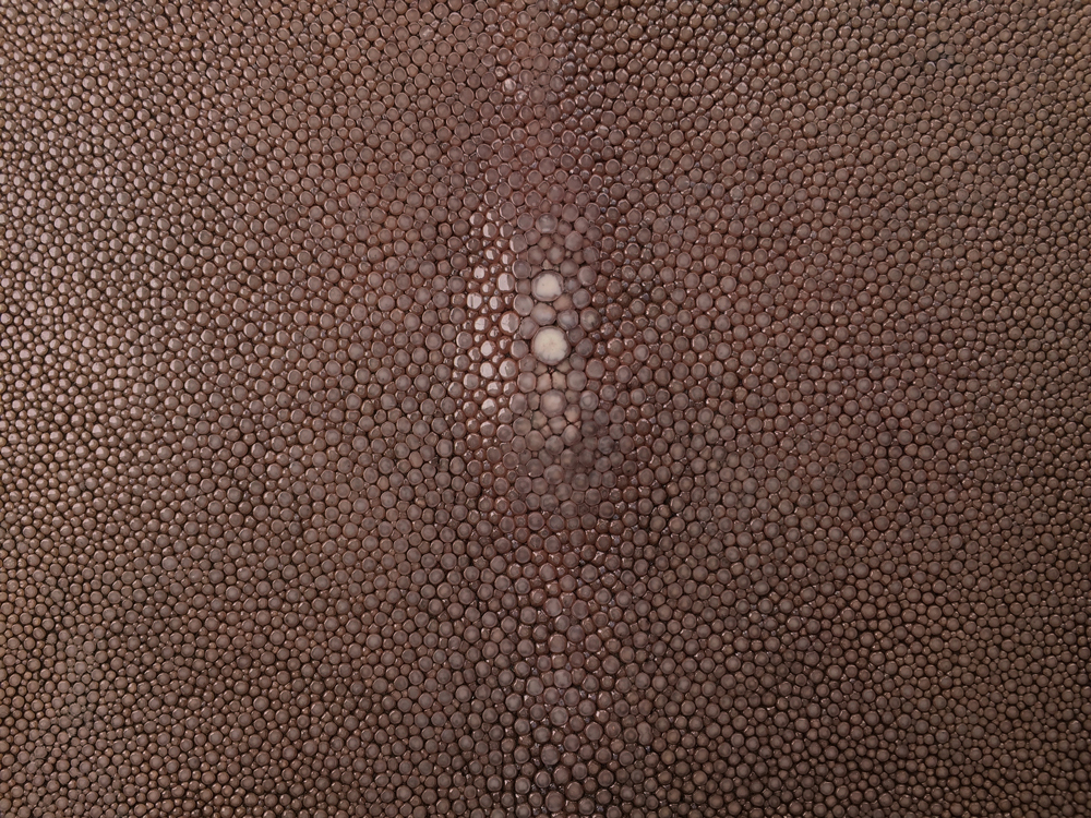 Genuine Exotic - SHAGREEN SPORT RUST