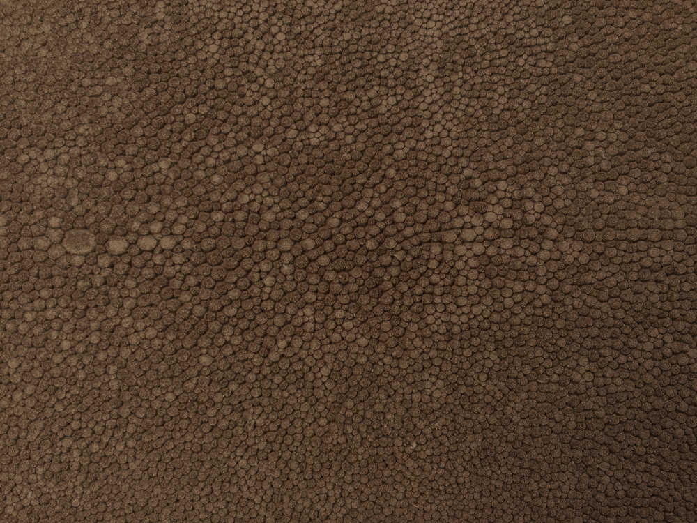Semi Exotic -  MOCHA SUEDED SHAGREEN