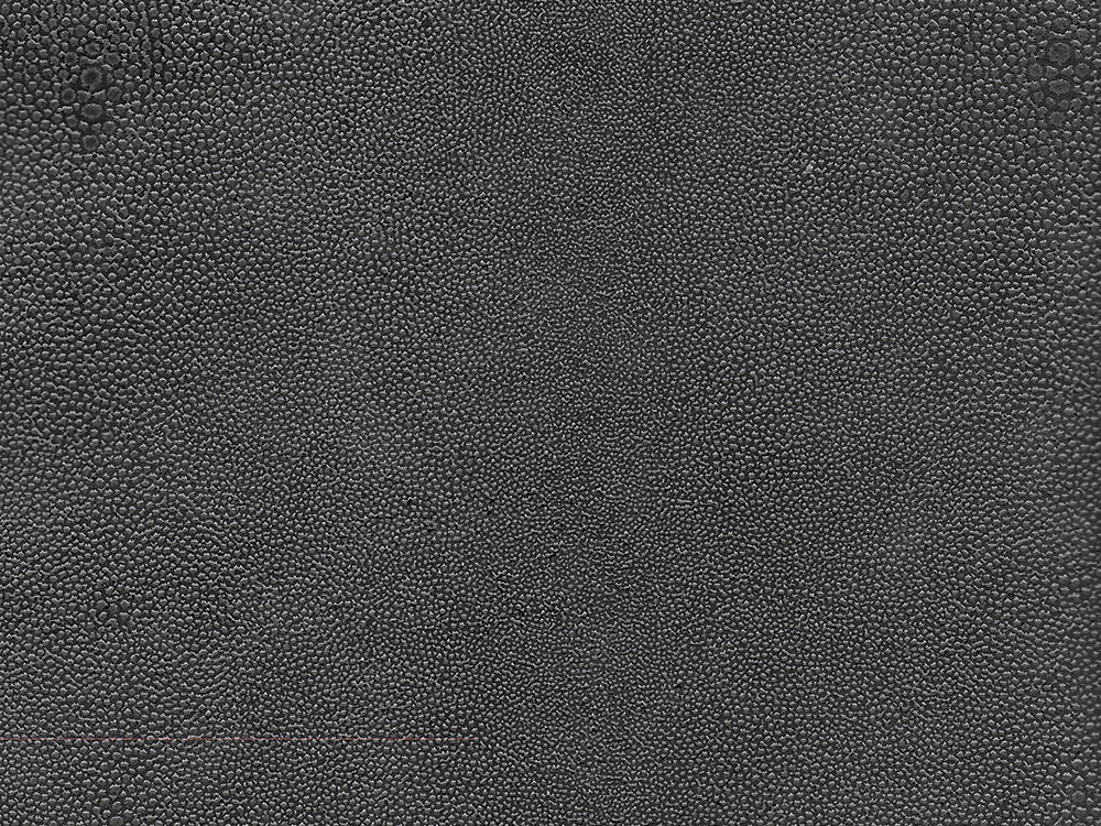 Semi Exotic -  SHAGREEN CHARCOAL