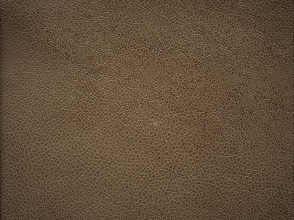 Semi Exotic -  FAUX SHAGREEN BRANDY