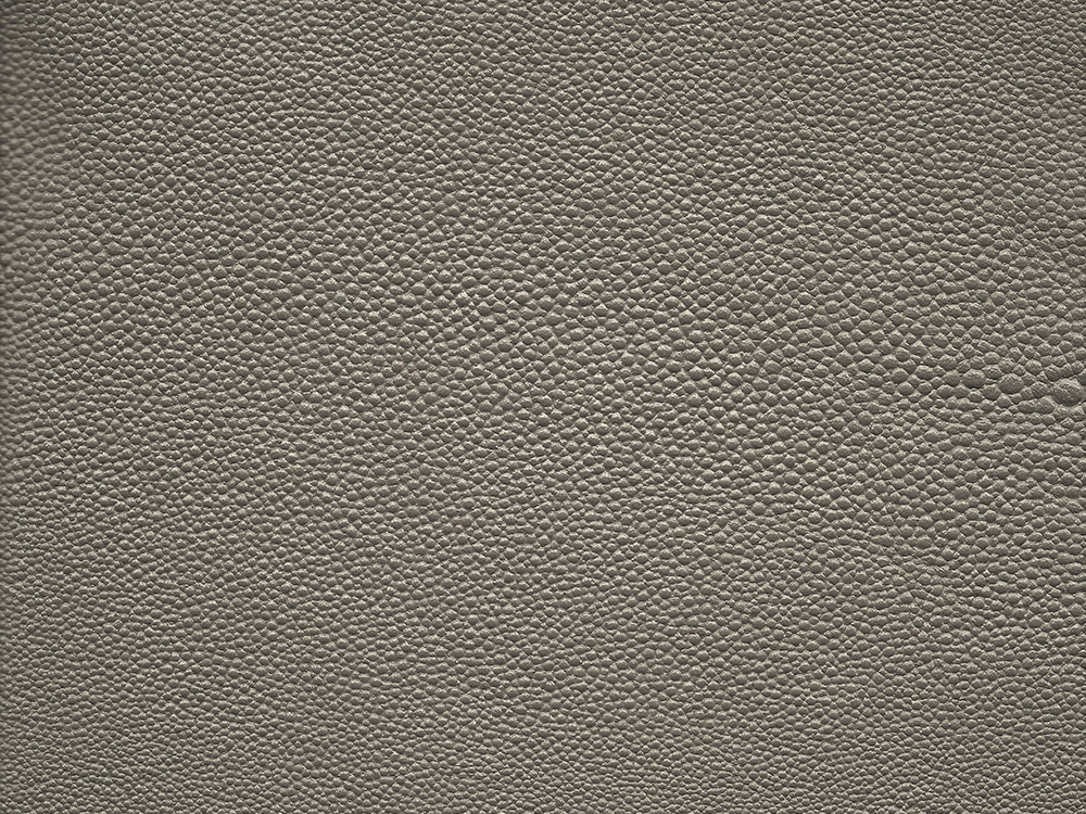Semi Exotic -  SHAGREEN PLATINUM