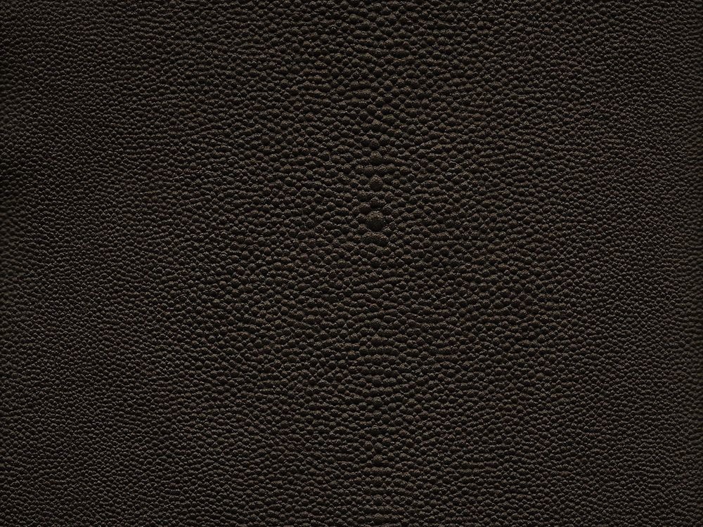 SEMI EXOTIC -  SHAGREEN BRONZE