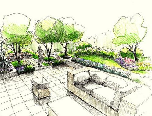 landscape backyard.png