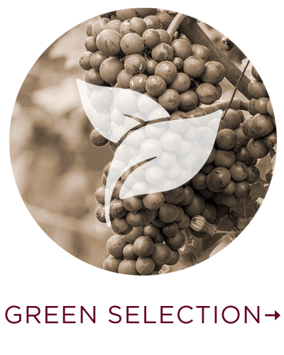 green-selection.png