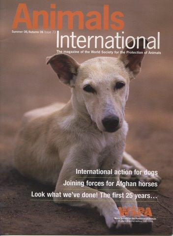 AnimalsInternationalSummerAutumn 2006.jpeg