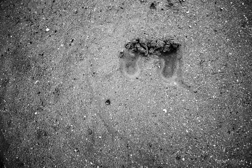 decije stope pesak_.jpg