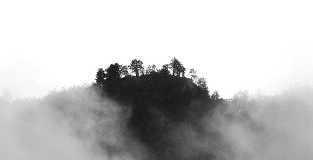 tara obdaniste 13 magla planina drvo 3.jpg