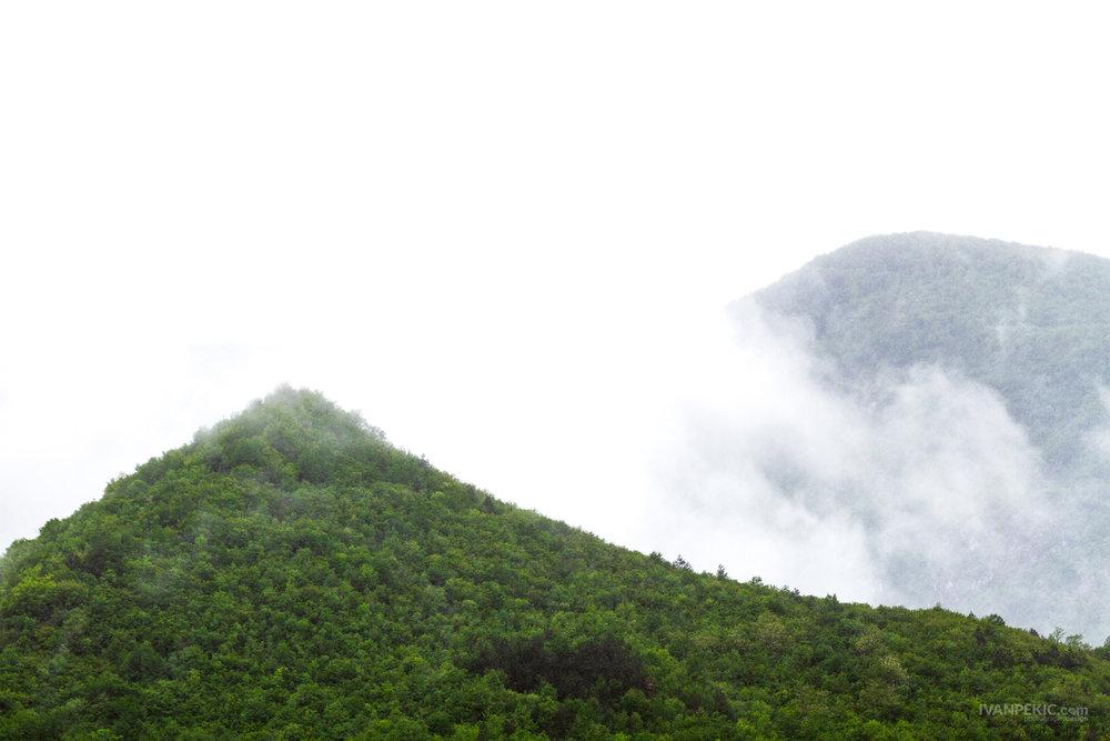tara dzamija magla planina 3.jpg