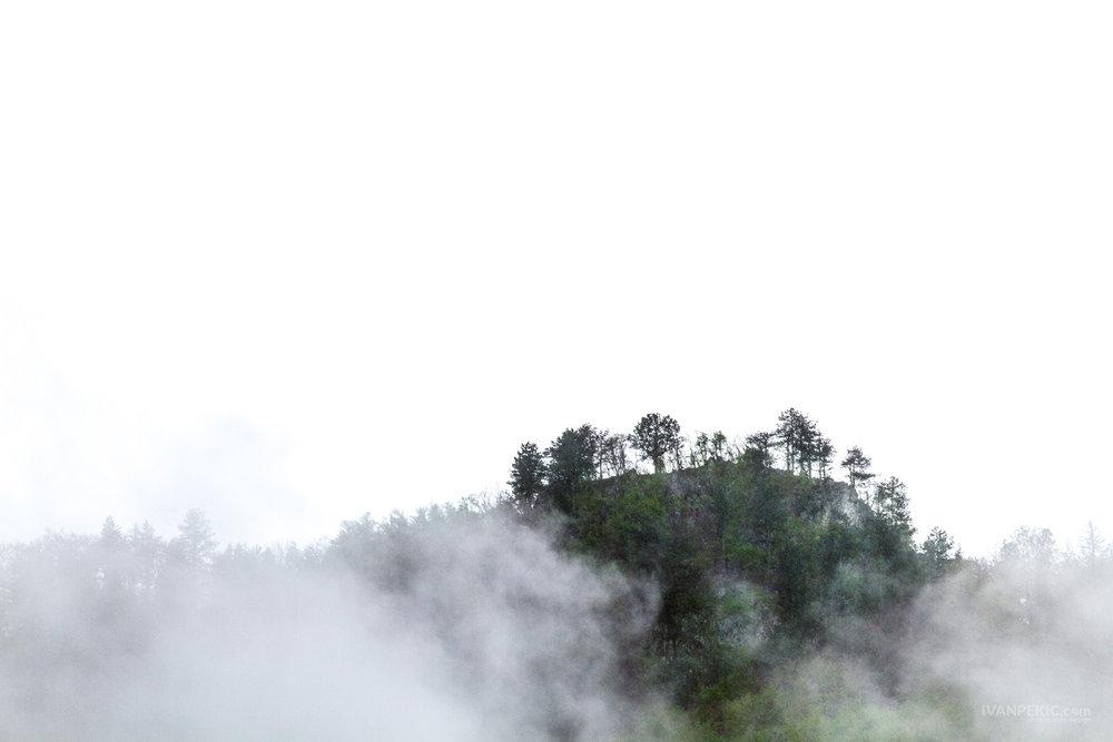 tara dzamija magla planina 2.jpg