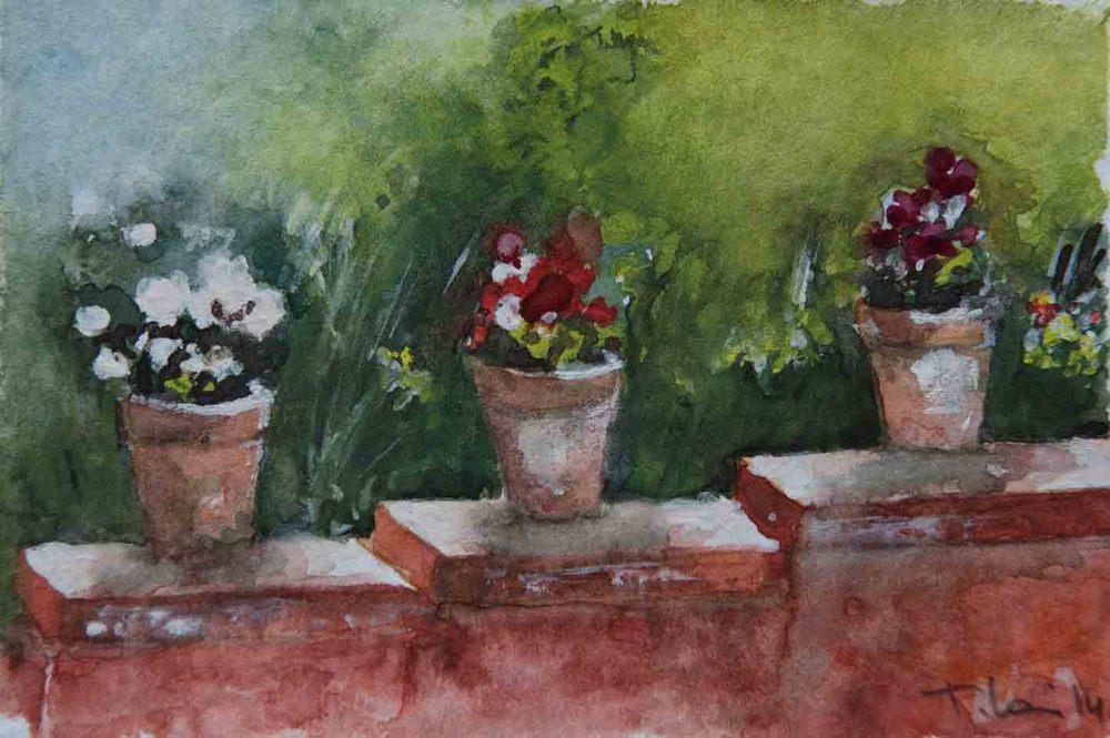 'Vasi di fiori'