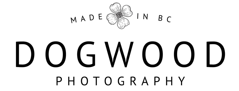 dogwood photography