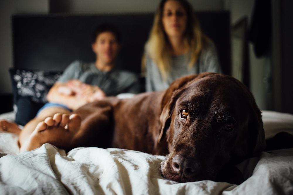 dogwoodphotography_photographer_vancouver_newborn_baby_bryce-13.jpg