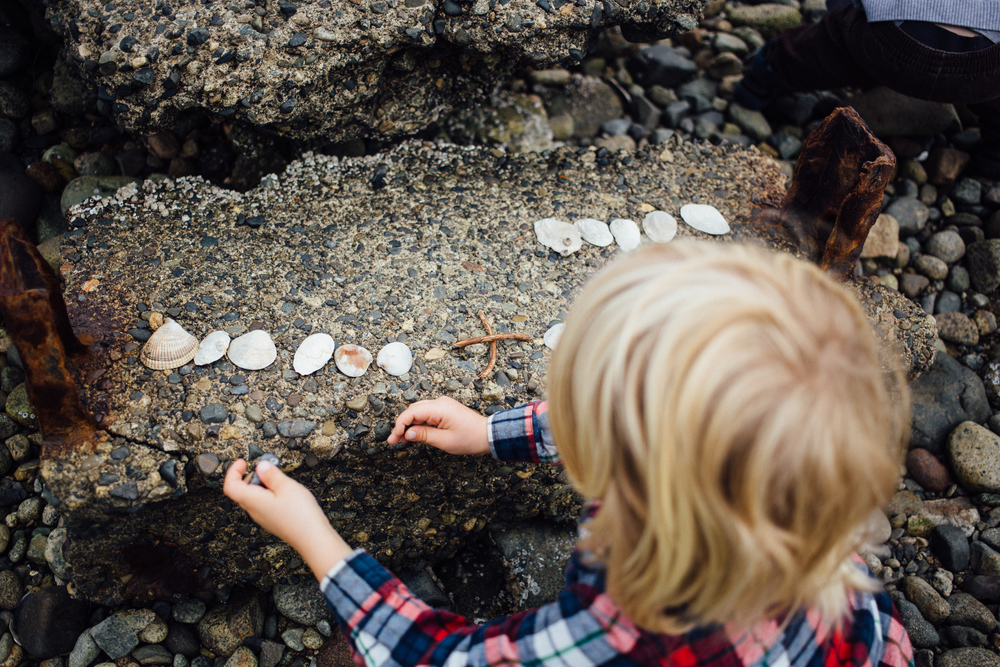 dogwoodphotography_photographer_north_vancouver_child_family_wildbird-12.jpg