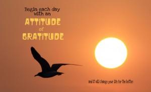attitude-of-gratitude1