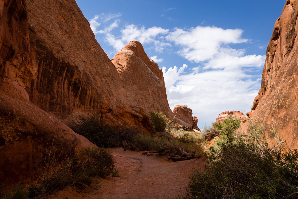 Hiking Trail In Arches