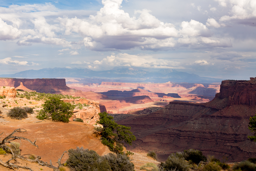 Canyonlands National Park Vista