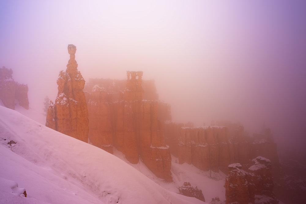Bryce Canyon National Park, on a misty, foggy morning.