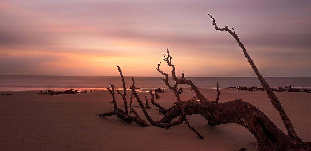 Sunrise at Driftwood Beach, Jekyll Island.