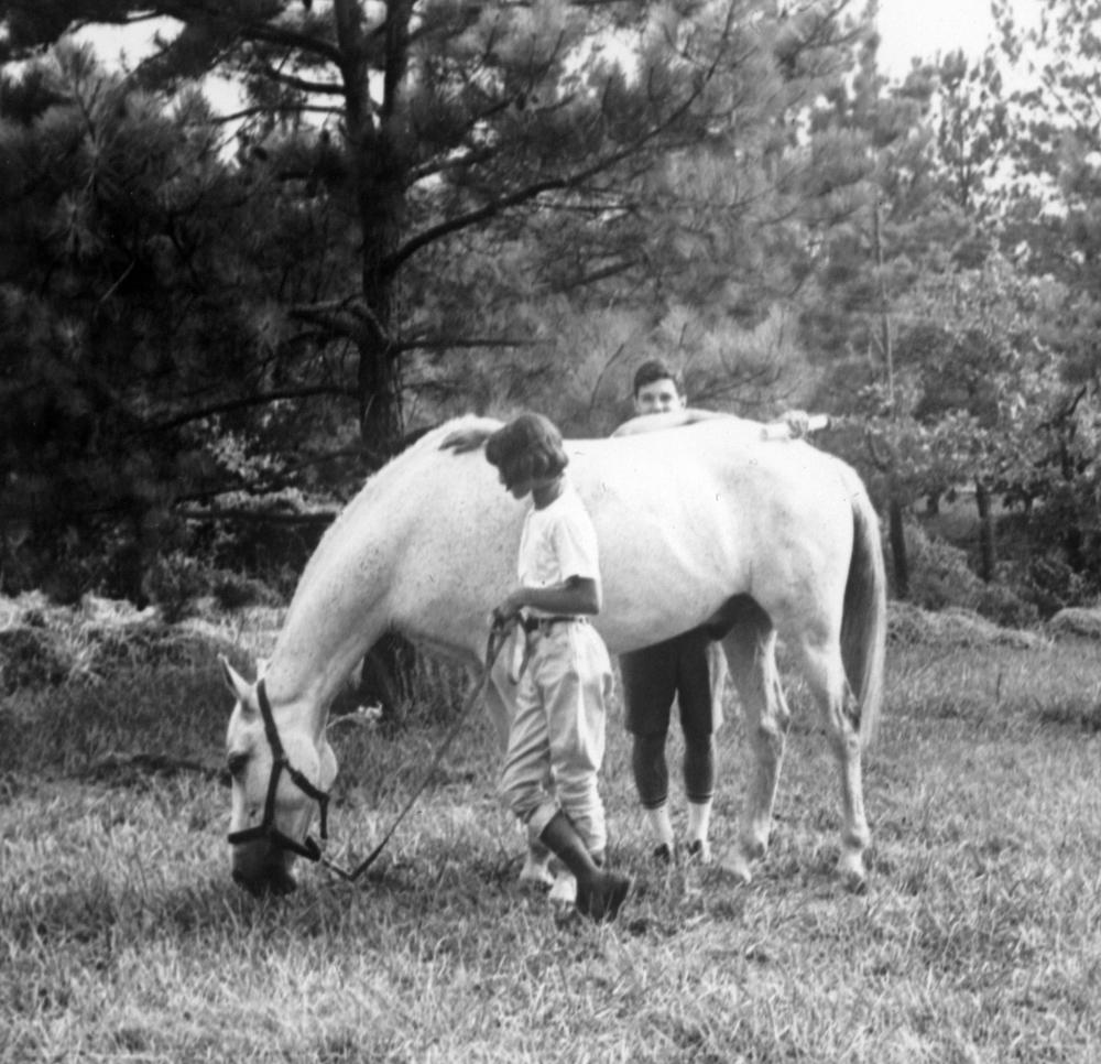1964-65 horse (75).jpg