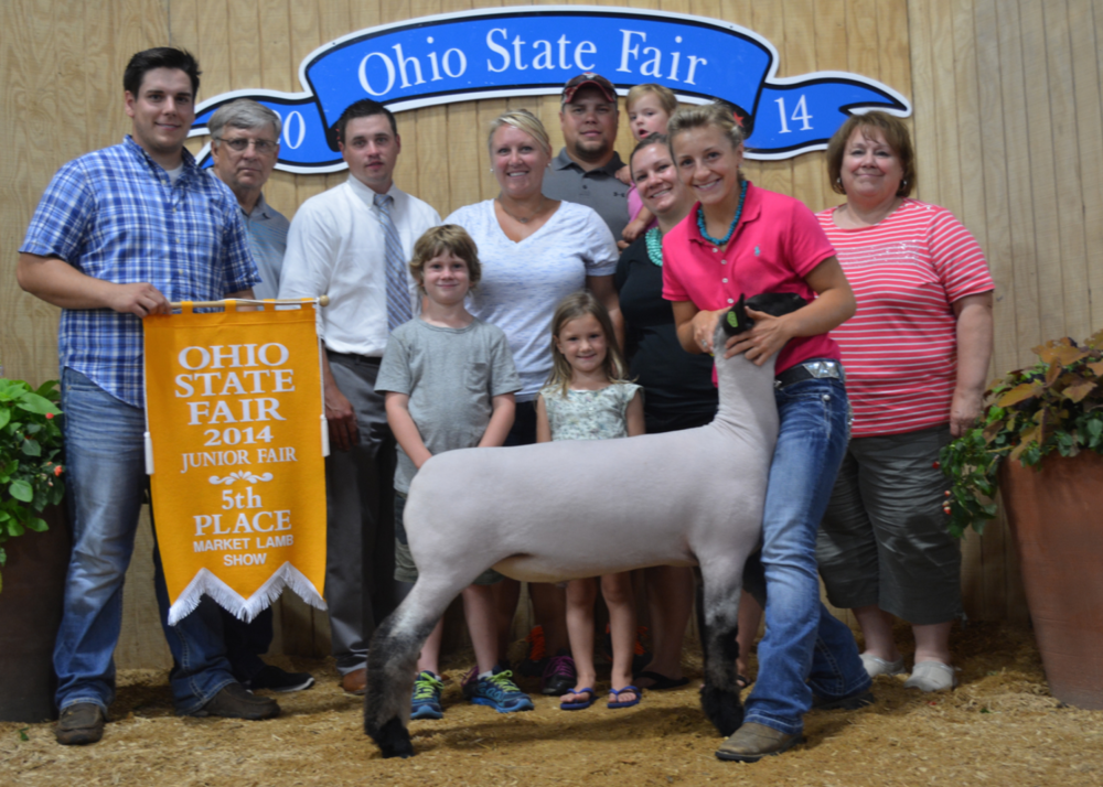 Reserve Grand  X-Bred - 2014 Ohio State Fair Showman:  Miller Family