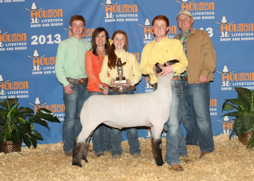 Class 8 WInner - 2013 Houston Livestock Show Sire:  MastercopyDam:  WH0-055Showman:  Winfrey FamilyPlaced by:  Hill Show Stock