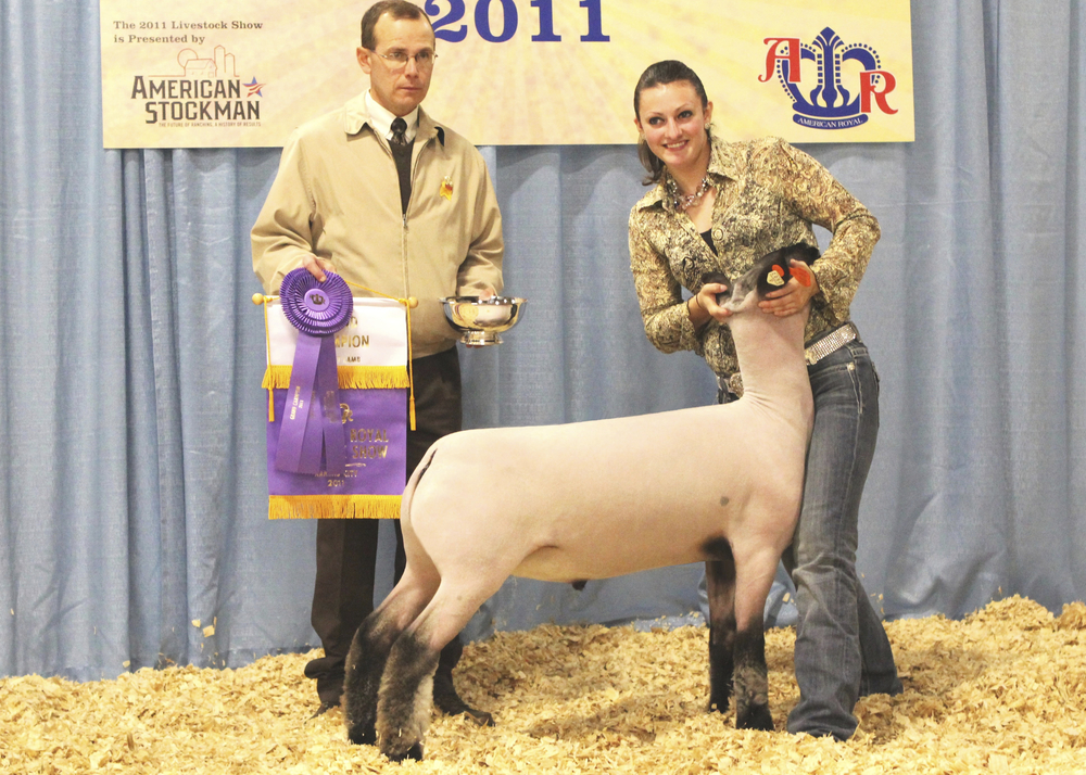 Grand Champion - 2011 American Royal  Sire:  UntouchableDam:  WH 9-006Showman:  Fruechey FamilyPlaced by:  Hill Show Stock