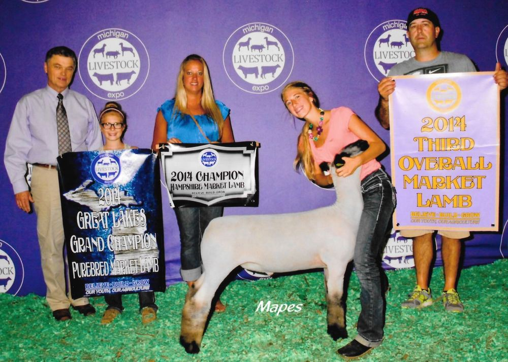 Grand Champion Hampshire - 2014 Michigan Livestock Expo Sire:  True Classic Dam:  WH 8-075Showman:  Maddy Stewart