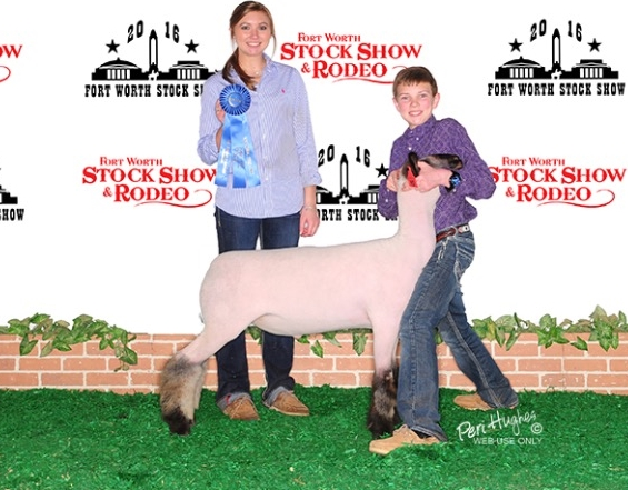Class Winner - 2016 Fort Worth Stock Show Sire:  Pure Power (WH 8-075 son)Showman:  Owens FamilyBreeder:  AndresenPlaced by:  Hill Show Stock