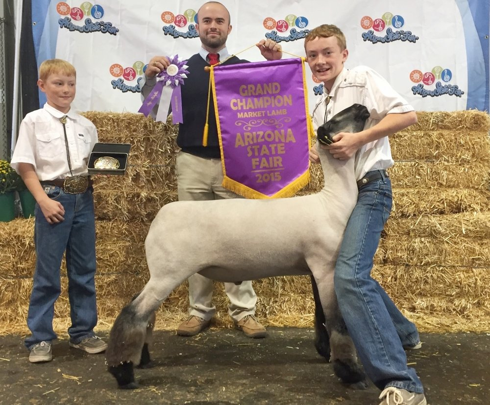 Grand Champion - 2015 Arizona State Fair Sire:  Public EnemyDam:  WH 4-053Showman:  Connor BryanPlaced by:  Hill Show Stock